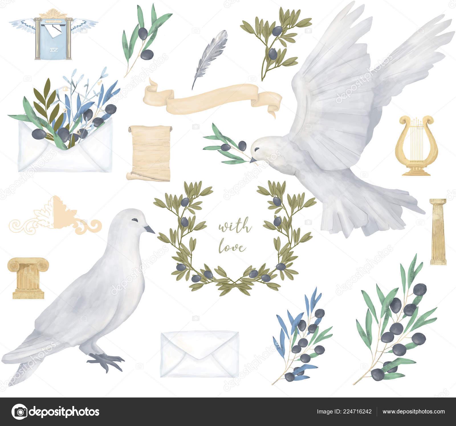 Dessin Oiseau Mouche pigeon clip art dessin aquarelle oiseau mouche fleurs illustration