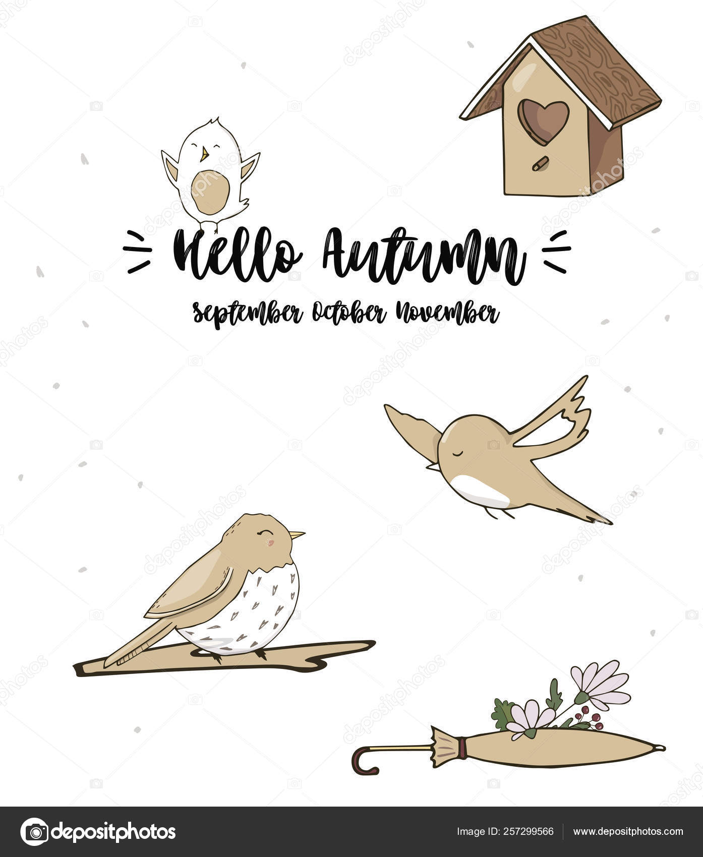 Sparrows Vector Songbird Illustration Singer Drawing