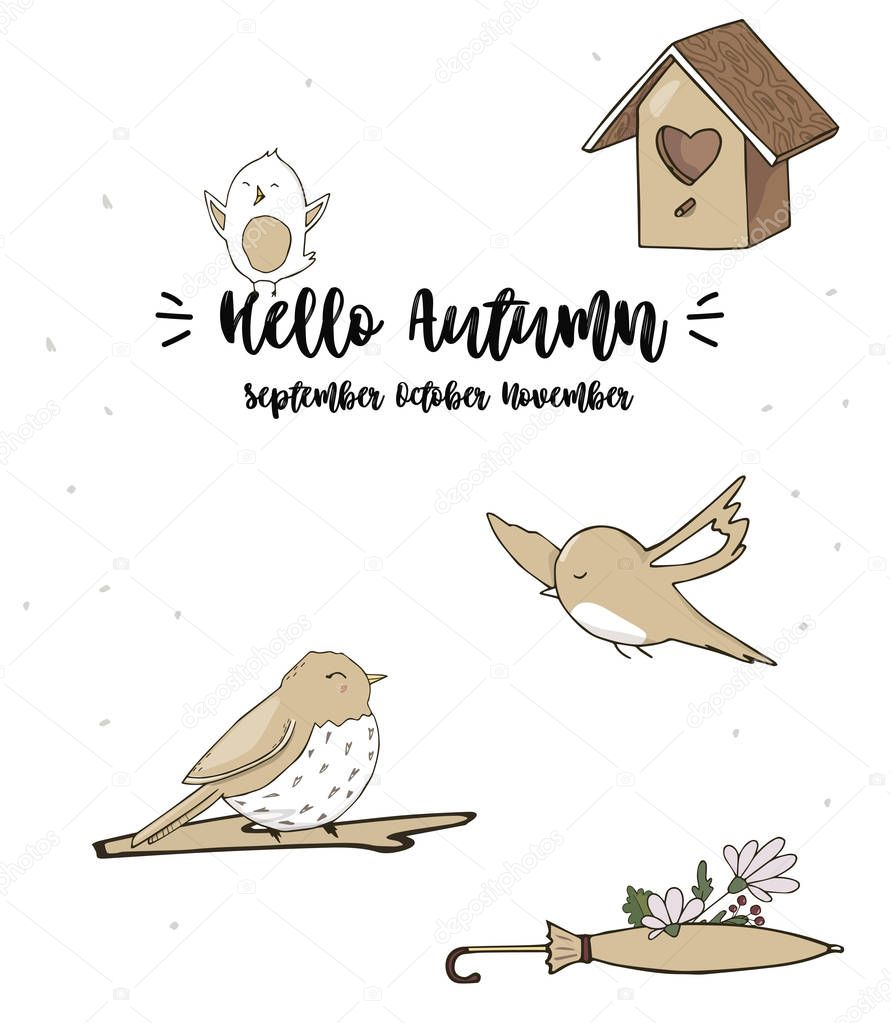 Sparrow Vector Illustration A Singer Drawing Character Bird Color Grey Texture Smile Dove Face Full Geometric Cute Forest Birds Small Flying Peace Sit Funny Bluebird Zoo On White Background Premium Vector