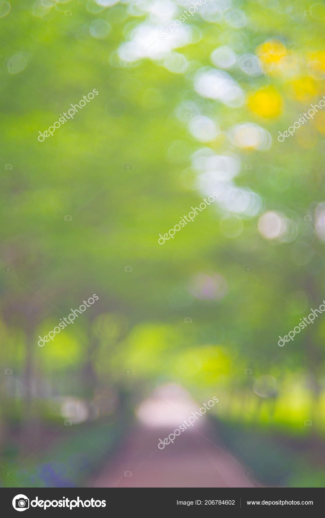 Natural Blur Full Hd Photoshoot Background Nature Background Images