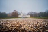 Fotografie Herbstlichen Wald gehen im November im Regen