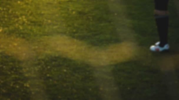 Brankář stojí poblíž fotbalový šampionát čisté, rozmazané, fotbal