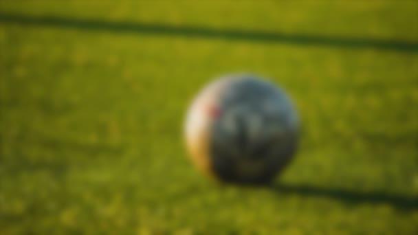 Goalkeepers leg kicks the ball, blurred for background