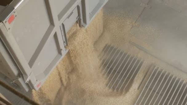 Auto nákladní lodě kuří oka nebo zrna ječmene do výtahu, zemědělství