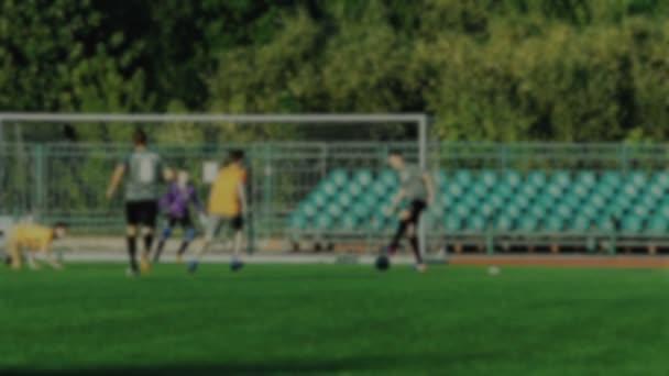 Fotbalový hráč udeří míč a skóre cíle zadní síť, brankář Mine cíl, mistrovství, rozostřené pozadí
