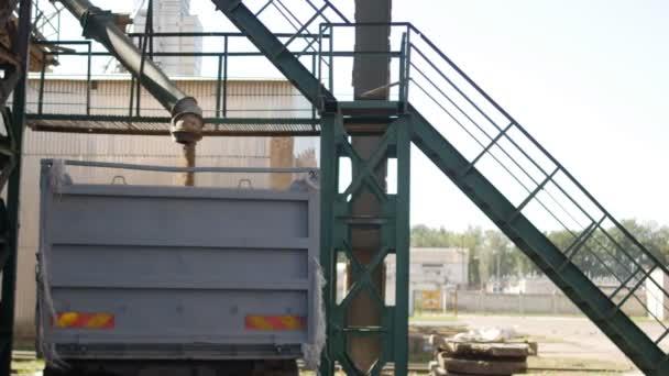 Zrna pšenice jsou načteny do kamionu, závod chleba produktů, podnikové frézování a krmivářský průmysl