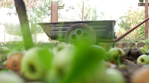 Muž válce zahradní vozík na chatě pro načítání hnoje