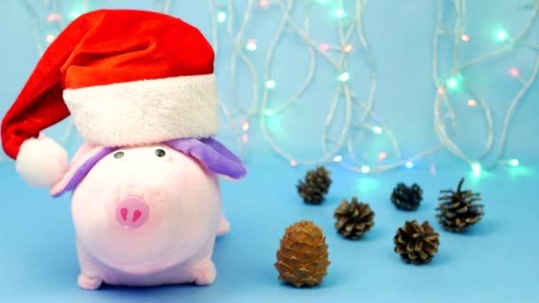 Weihnachtsbeleuchtung Kegel.Ein Rosa Weihnachten Schwein In Einen Roten Weihnachtsmann Hut Die Kamera Im Hintergrund Schaut Sind Weihnachtsbeleuchtung Einen Blauen Hintergrund Weihnachts Kegel Der Textfreiraum Schwein