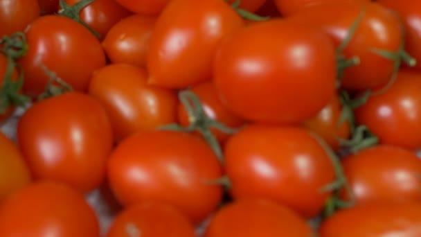 Pozadí zralé a šťavnaté červené cherry rajčata, close-up, rajče, Zpomalený pohyb, zelenina