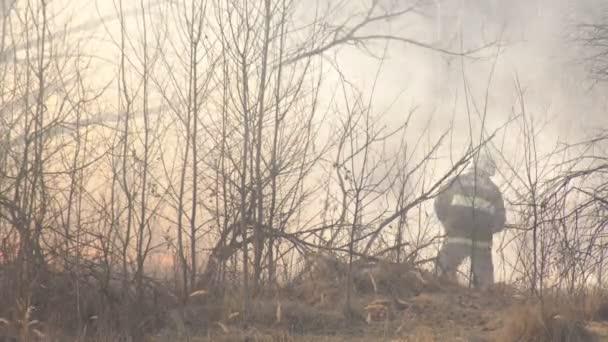 Hasiči zhasnout suchou trávu a hořící Les během požáru, jara, požáru
