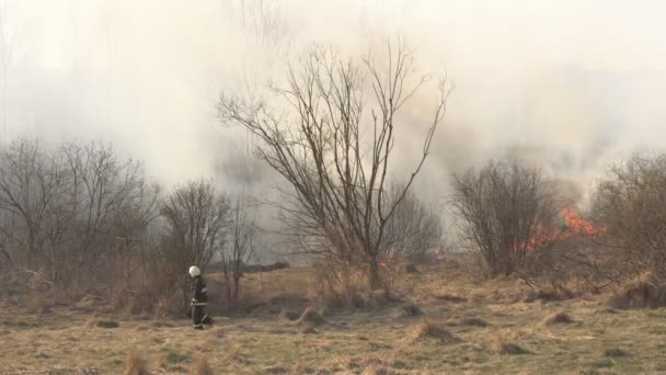 Hasiči zhasnout suchou trávu a hořící Les během ohně, jara, požáru, spousty kouře