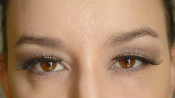 weibliches Gesicht mit langen falschen Wimpern öffnet ihre braunen Augen und blickt in die Kamera. Nahaufnahme hübsches Mädchen Modell mit attraktivem Make-up