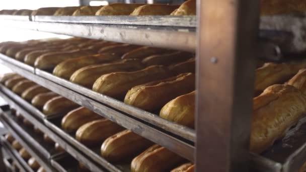 Frissen sült eclairs feküdjön sütőlapok után kemencében. Sütemény és édesség bagettek gyártása. Sütőipari termékek. Malomipari termékek.