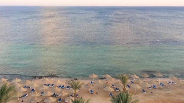 Letecký pohled na korálové pláži s kymácející palmy a svěží tyrkysové moře