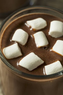 Sweet Homemade Chocolate Hot Cocoa with Small Marshmallows