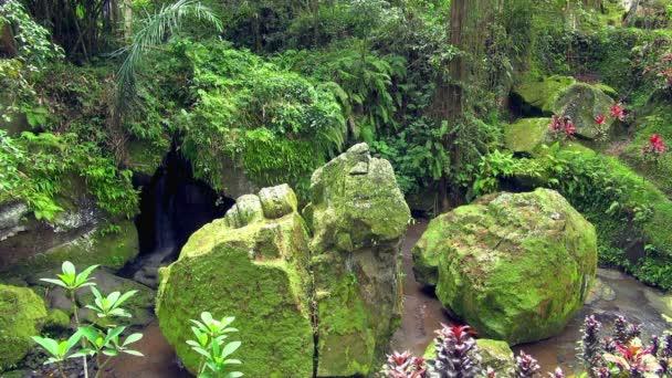 Uzamčení na jednom z nádherné zahrady v zahradách Ayung Resort na Bali, Indonésie Ubud. Je atraktivní malé vodopády, skryté pod skály moss zahrnuty