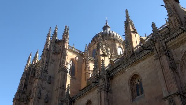 View of the New Cathedral in Salamanca Spain, with blue sky and birds flying