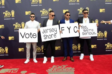 LOS ANGELES - JUN 16:  Jersey Shore cast, (L-R) Vinny Guadagnino, Mike Sorrentino, Ronnie Ortiz-Magro, Pauly D at the 2018 MTV Movie And TV Awards at the Barker Hanger on June 16, 2018 in Santa Monica, CA