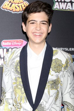 LOS ANGELES - JUN 22:  Joshua Rush at the 2018 Radio Disney Music Awards at the Loews Hotel on June 22, 2018 in Los Angeles, CA