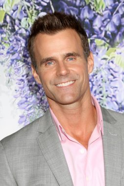 LOS ANGELES - JUL 26:  Cameron Mathison at the Hallmark TCA Summer 2018 Party on the Private Estate on July 26, 2018 in Beverly Hills, CA