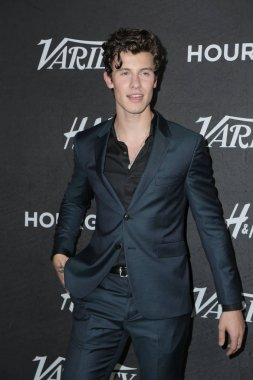 LOS ANGELES - AUG 28:  Shawn Mendes at the Variety's Power of Young Hollywood Party at the Sunset Tower Hotel on August 28, 2018 in Los Angeles, CA