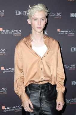 LOS ANGELES - NOV 4:  Troye Sivan at the Hamilton Behind the Camera Awards at the Exchange LA on November 4, 2018 in Los Angeles, CA