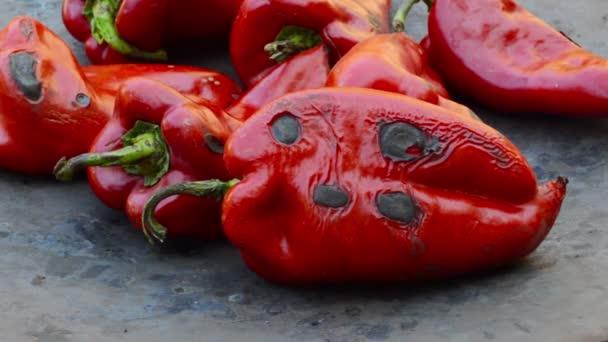pečené červené papriky na grilu