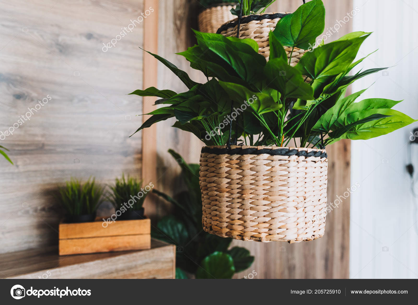 Modern potted evergreen artificial plants used interior decor