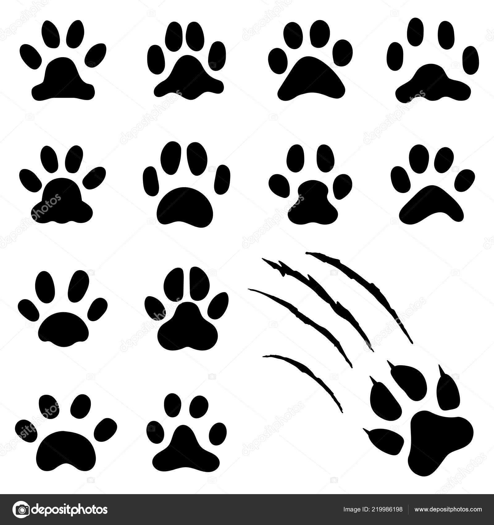 Empreinte De Patte Pets Impressions De Pattes De Chat