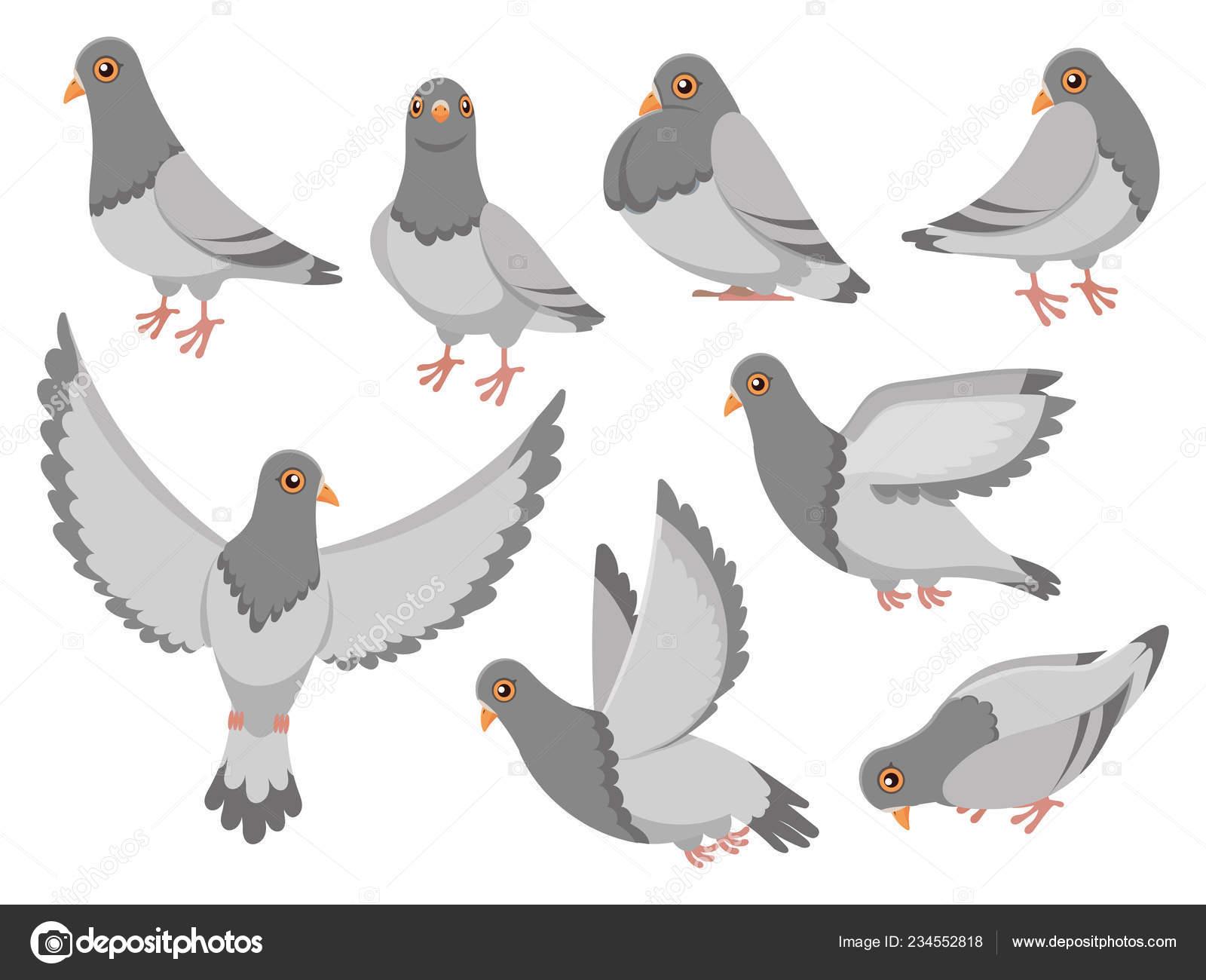 Pigeon De Dessin Animé Ville Colombe Oiseau Vol De Pigeons