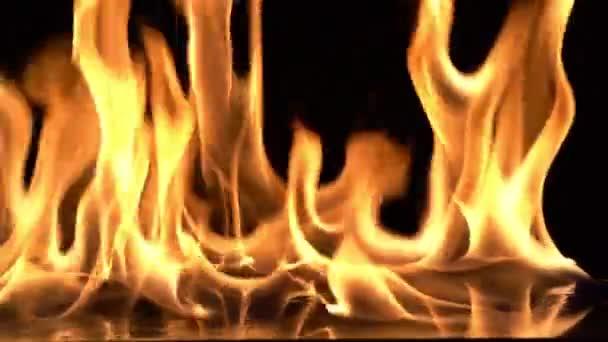 Pomalý pohyb video střelba, požár plameny vznícení a hoří.Skutečný oheň, Řada skutečných plamenů vznítí na černém pozadí.
