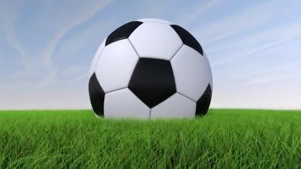 Futball-labda, füves területen, napközben