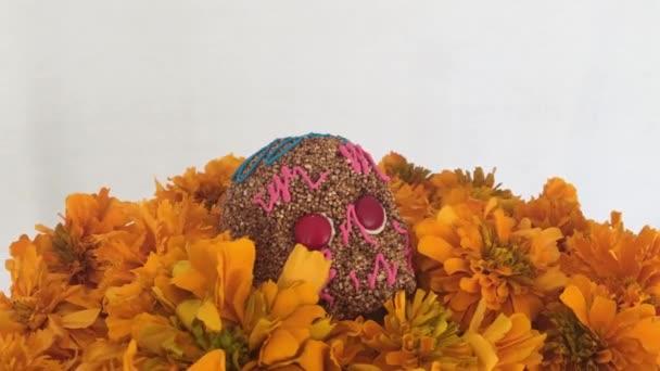 authentischer amaranthus schädel über cempasuchitl blumen am tag der toten, mexiko