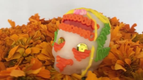 authentischer schädel über cempasuchitl blumen am tag der toten, mexiko