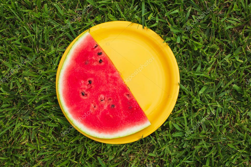 Fresh Watermelon Slice on Yellow Plate. Summer Time