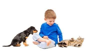 Happy boy with cat and puppy isolated on white background