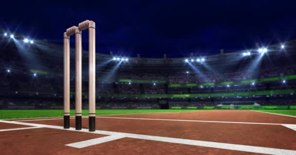 Night cricket pitch scene with moving spotlight shine and wooden wicket closeup, 4k loop animation of sport arena building background
