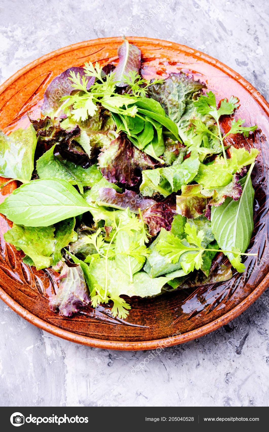 salade fraîche avec salade mesclun dans bol salade verte concept