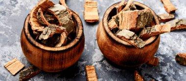 Oak bark in mortar on slate table. Oak in herbal medicine.Medicinal plant oak.