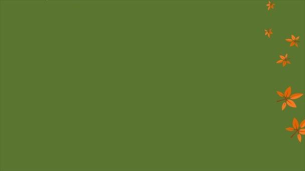 Autunno con le foglie di autunno sulla raccolta rami animazione sfondo