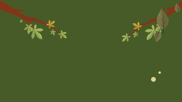 Ahoj podzimní kolekce video pozadí šablony