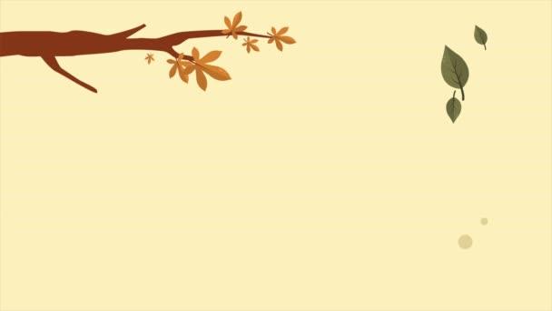 collezione di video di sfondo autunno modello Ciao