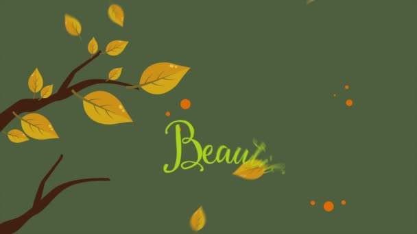 Beautiful leaves autumn day footage background collection