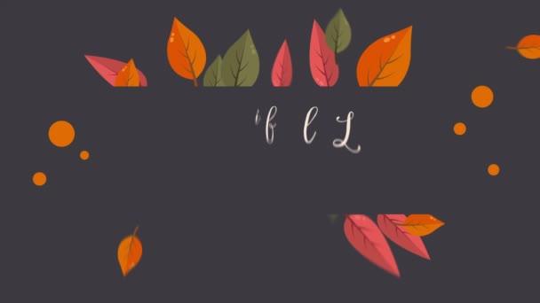 Gyönyörű őszi szezon levél felvételeket gyűjtemény