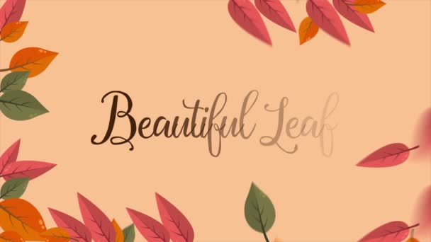 Autumn season beautiful leaf footage collection