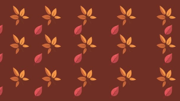 maple leaves autumn day background collection