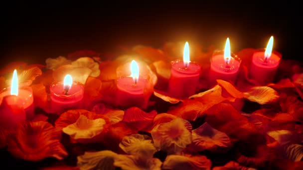 Flower petals with candle burning footage for greeting Valentine day collection