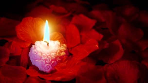 Footage of rose petals with pink candle burning for Valentine day collection