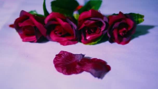 Valentin nap felvételeket a rózsa és a szirmok gyűjtemény