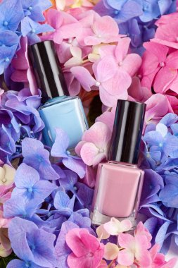 Mockup of pink and blue varnish on hortensia flowers. Fashion and beauty concept in trendy pastel colors